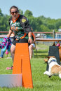 Dogs show
