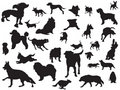 Dogs silhouette set Royalty Free Stock Photography