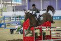 Action from the  CHI Al Shaqab 2013 Royalty Free Stock Photo