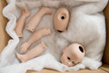 Doll body parts Royalty Free Stock Photo