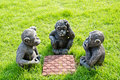 Doll monkey playing chess. Royalty Free Stock Photo