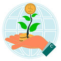 Dollar gold coin, money in the green sprout of tree in her hand Royalty Free Stock Photo