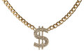 Dollar necklace Royalty Free Stock Photo