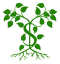 Dollar tree green illustration with the branches growing into a sign shape Stock Photography