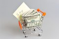 Dollars with shopping list in pushcart on gray background Royalty Free Stock Photos