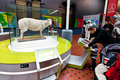 Dolly national museum of scotland the sheep on display at in science and technology gallery http donttouchthedinosaurs wordpress Royalty Free Stock Photo