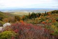 Dolly Sods West Virginia Royalty Free Stock Photo
