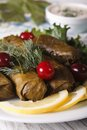 Dolma of grape leaves on a plate macro vertical with herbs Royalty Free Stock Image