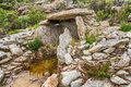 Dolmen at Revincu in Corsica Royalty Free Stock Image