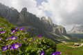 Dolomites in spring landscape trentino alto adige Royalty Free Stock Photo