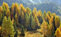 Dolomiti in autunno Royalty Free Stock Photo