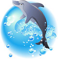 Dolphin and blue waves Stock Image
