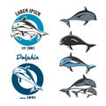 Set of emblem with the logo of a dolphin. EPS10