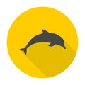 Dolphin icon with long shadow