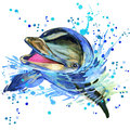 Dolphin illustration with splash watercolor textured background Royalty Free Stock Photo