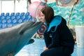 Dolphin kiss Royalty Free Stock Photo