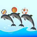 Dolphin Show with balls Royalty Free Stock Photo