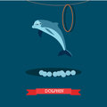 Dolphin show vector illustration in flat style