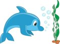 Dolphin VECTOR Stock Photo
