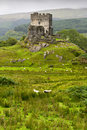 Dolwyddelan  castle in Snowdonia, Stock Image