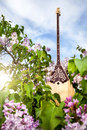 Dombra kazakh instrument in the garden with blooming lilac flowers at blue sky Royalty Free Stock Images