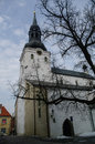 Dome Church (Cathedral of Saint Mary the Virgin). Tallinn, Eston Royalty Free Stock Photo