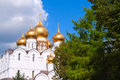 Domes of assumption cathedral at yaroslavl in summer russia Royalty Free Stock Photos
