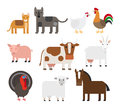 Domestic animal flat vector icons