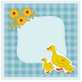 Domestic bird duck and blue frame Royalty Free Stock Photos