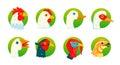 Domestic birds vector icons set