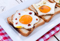 Domestic eggs photography of the homemade organic on toast bread Stock Photo