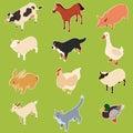 Domestic isometric animals