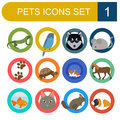 Domestic pets and vet healthcare flat icons set vector illustration Royalty Free Stock Photos