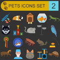 Domestic pets and vet healthcare flat icons set vector illustration Royalty Free Stock Images