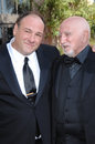 Dominic Chianese,James Gandolfini Royalty Free Stock Photos
