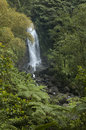 Dominica Waterfall Royalty Free Stock Photo