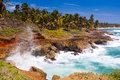 Dominican republic rocky coastline of Stock Photos