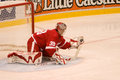 Dominik hasek has the puck during a game against edmonton oilers at joe louis arena during season Stock Image