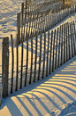 Don`t Fence me In. Royalty Free Stock Photo