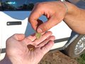 Donation hands making poor with euro coins Stock Image