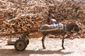 Donkey carriage with a full of wooden chunks Stock Images