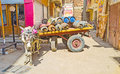 The donkey with the cart Royalty Free Stock Photo