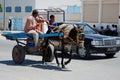 Donkey & Cart by Mercedes, El Djem, Tunisia Royalty Free Stock Photo