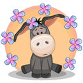 Donkey with flowers Royalty Free Stock Photo