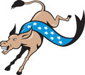 Donkey Jackass Jumping Democrat Stock Images