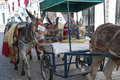 Donkey taxis at mijas on the costa del sol spain is one of most beautiful white villages of southern area called andalucia it is Stock Image