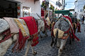 Donkey taxis at mijas on the costa del sol spain is one of most beautiful white villages of southern area called andalucia it is Stock Photos