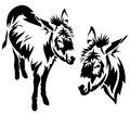 Donkey vector cute outline black and white standing animal Stock Photo