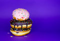 Donuts set Royalty Free Stock Photos