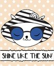 Doodle cat in fashionable summer hat and sun glasses.